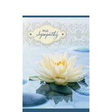Sympathy Water Lilly
