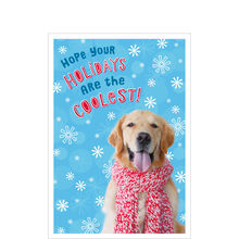 Business holiday cards business greeting cards hallmark fun holiday dog photo colourmoves