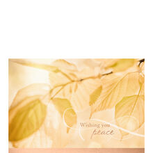 Business sympathy cards sympathy cards hallmark business golden light leaves colourmoves Gallery