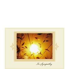 Golden Sunset Sympathy
