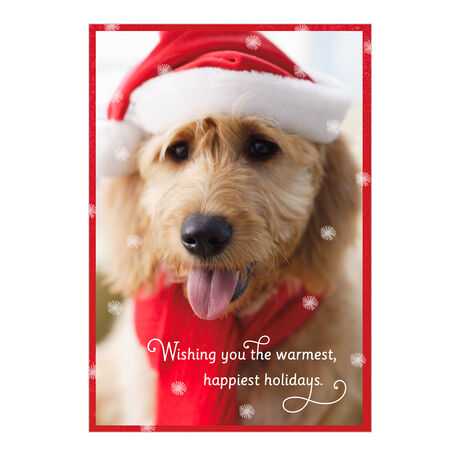 Dog in Holiday Hat Business Hallmark Card