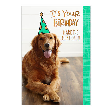Birthday Card (Dog in Party Hat) for Business