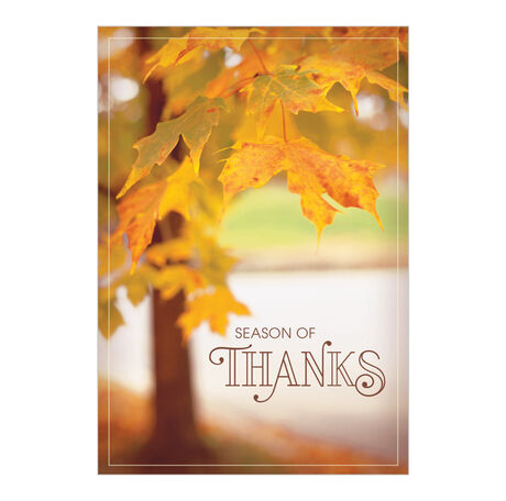 Yellow Leaves on Tree Thanksgiving Card