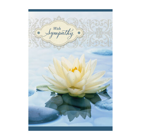 Sympathy Water Lily