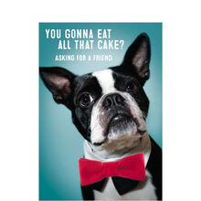 Debonair Dog