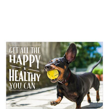 Playful Pup Health Business Hallmark Card