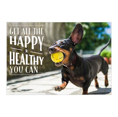 Playful Pup Health Business Hallmark Card