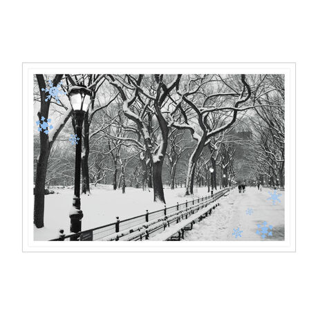 Snowy City Park Photo