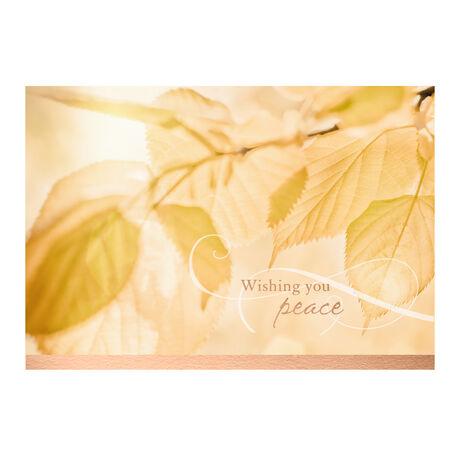 Golden Light & Leaves