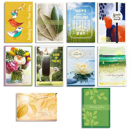 Assorted Care & Concern Cards for Business, 50 Pack