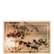 Business sympathy cards sympathy cards hallmark business sunlight silhouette colourmoves