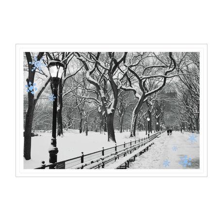 Snowy City Park Photo