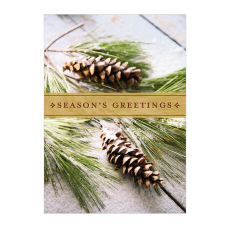 Bough Brushed in Snow Holiday Business Hallmark Card