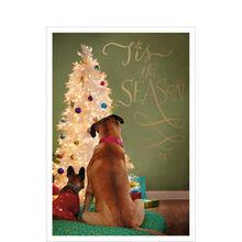 Holiday Dogs & Tree
