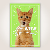 "This card proclaims, ""Me-Wow"" with a cat on the cover—what a fun way to tell your employees how great they are. SHOP NOW"