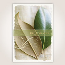 A simple, natural background featuring leaves on this card will express your sincere condolence perfectly.