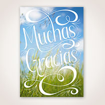 Spanish Thank You Card - Gracias en Campo Soleado